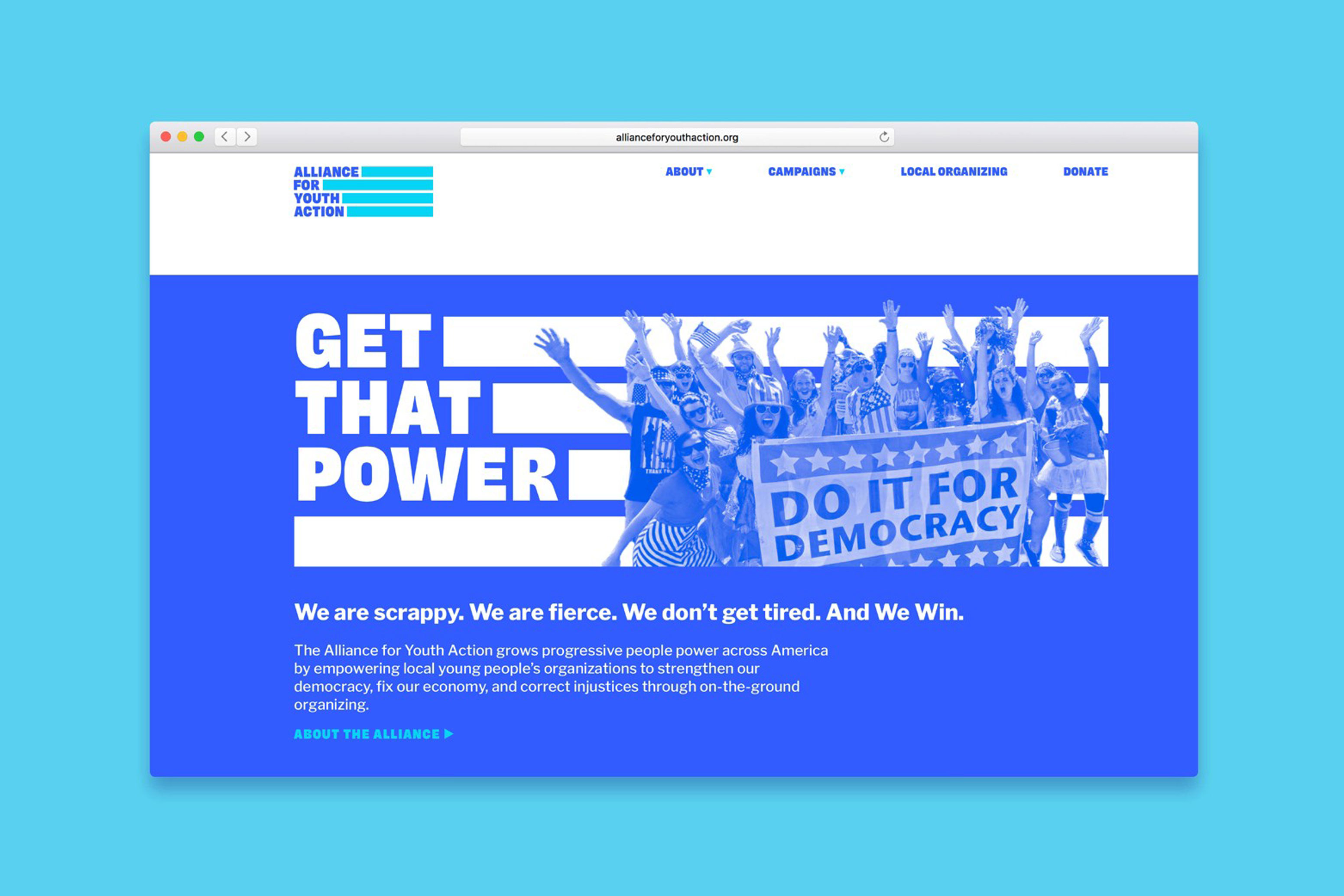 Alliance for Youth Action Website