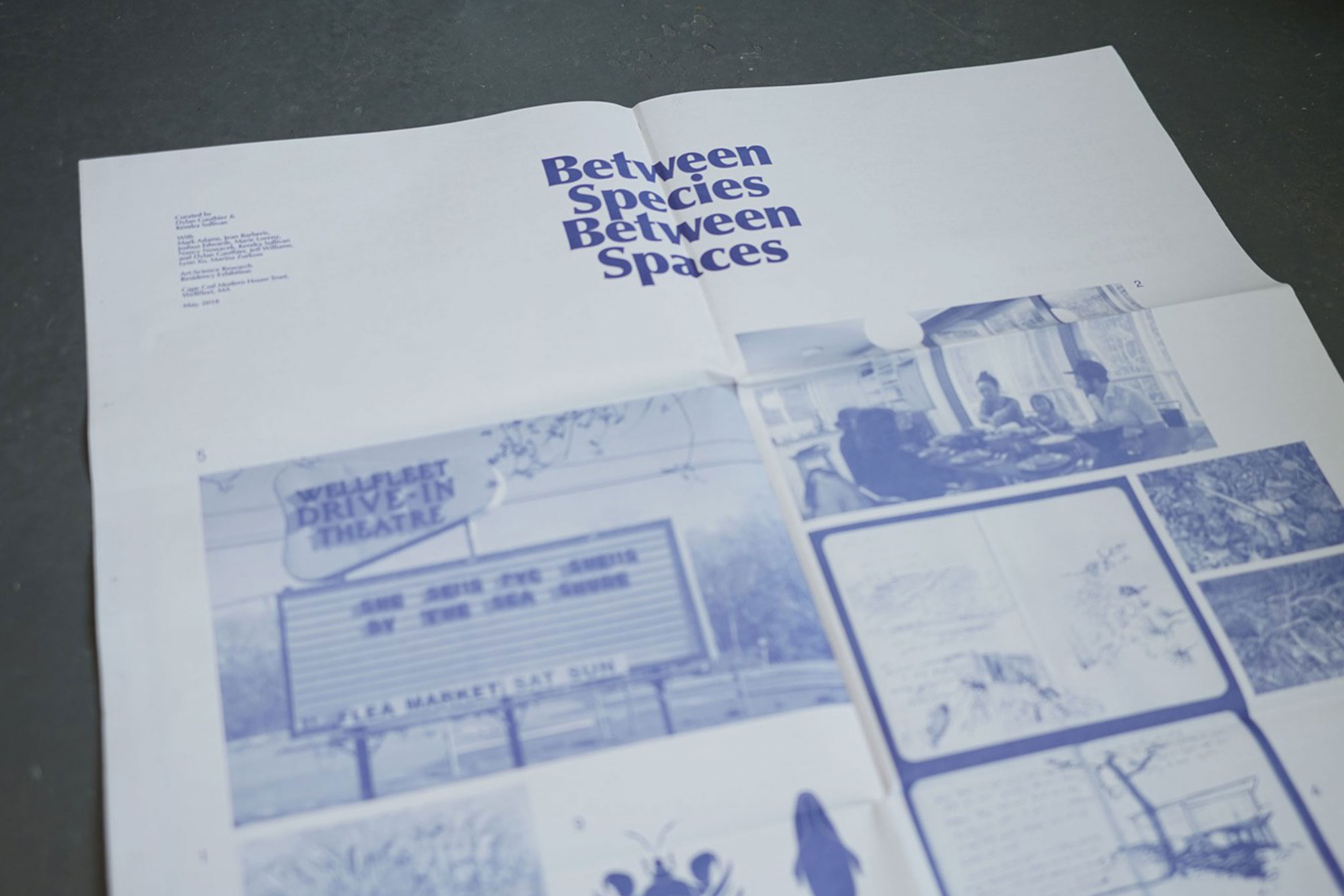 Between Species Between Spaces